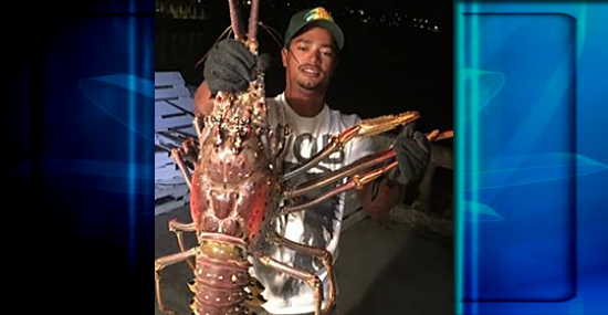 Pescador captura lagosta monstro e surpreende o mundo - Capa