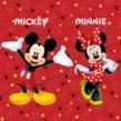 Animação Festa Mickey e Minnie