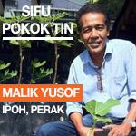 Sifu Pokok Tin Malaysia