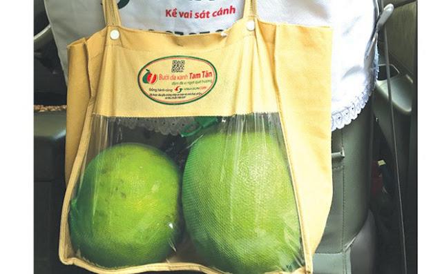Những trái bưởi đi rong theo tài xế xe taxi