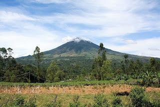 Jalur Pendakian Gunung Cikuray Garut