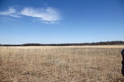 prairie restoration at Wild River State Park