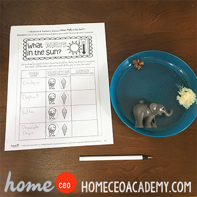 https://www.teacherspayteachers.com/Product/Student-Community-Helper-Week-30-Age-4-Preschool-Homeschool-Curriculum-3185364
