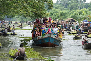 Guava market in Bangladesh