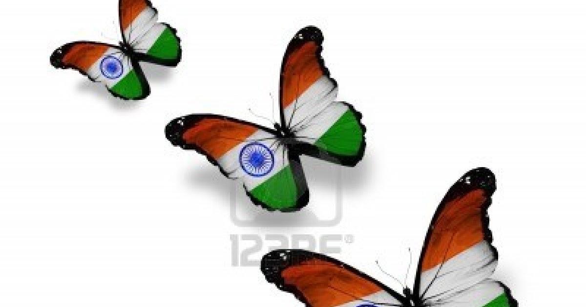 Indian Flag Butterflies: PRASADNEWS.COM: Jai Hind