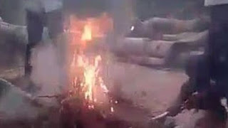 Despite the cries of terror from the puppies, the teens brutalize and burn the puppies alive!