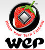 WeP Peripherals Limited