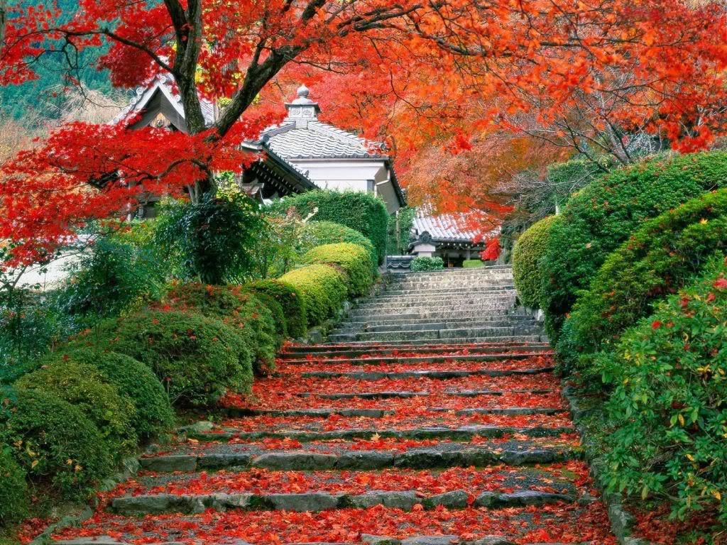 Desain Taman Rumah Ala Jepang