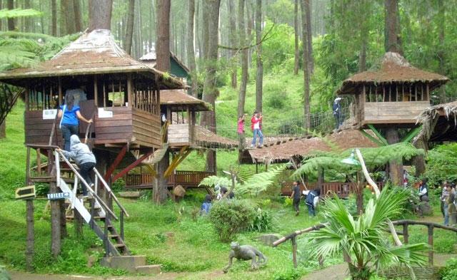 Rumah Pohon Jati Asih