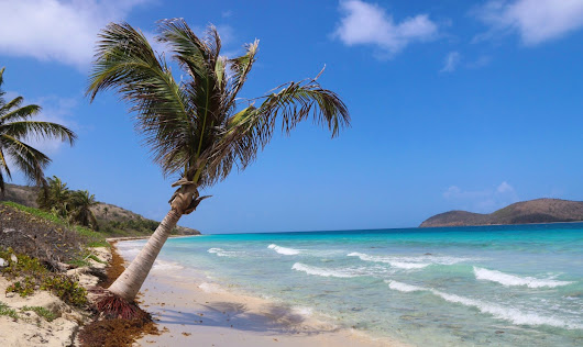 If a doctor gives you a month to live - mortgage everything, grab your loved ones, and head to Culebra