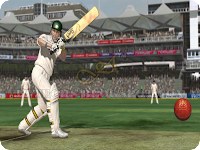 Ashes Cricket 2009 Snapshot 6