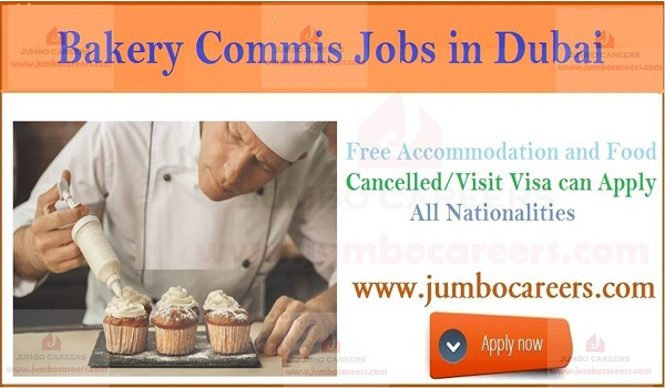 Dubai walk in interview jobs, Current commis jobs in Dubai,