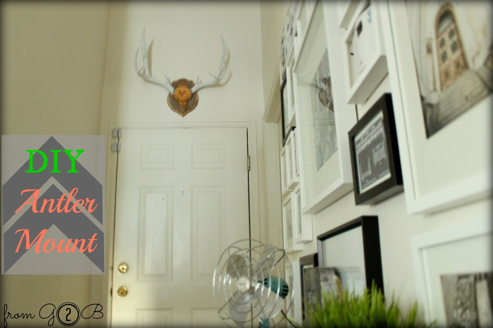 DIY-Antler-Mount-Tutorial