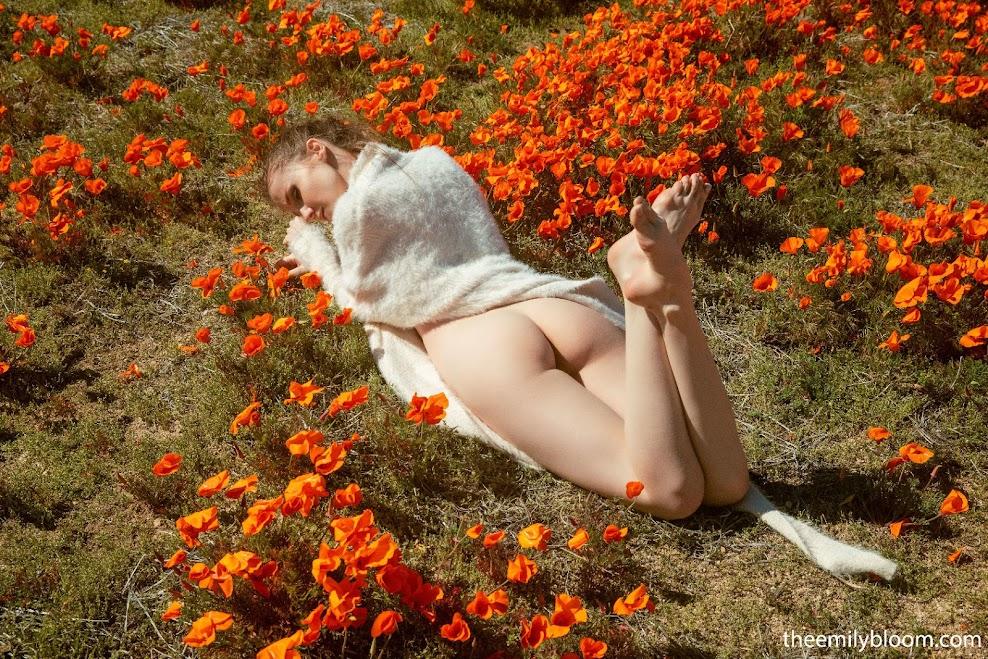 [TheEmilyBloom] Emily Bloom - Poppies