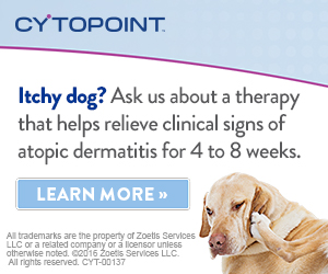 Web banner for CYTOPOINT from Zoetis Services LLC