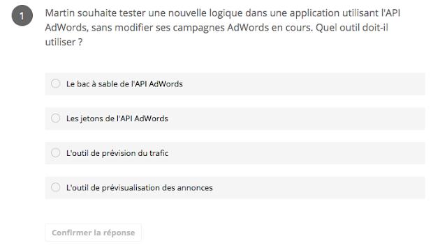Martin API ADWORDS  Certification googl partners publicité sur le réseau de recherche