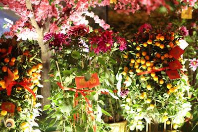 Flower display at Lee Tung Avenue, Hong Kong