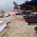 A Crocodile Entering The Beach Like A Boss Went Viral