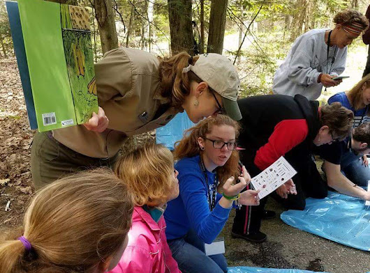'STOP the Invasives Week' in Michigan State Parks Aug. 1-6 offers hands-on programming