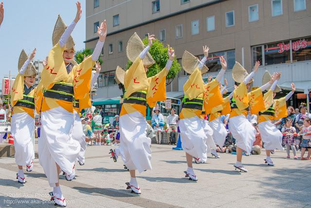 天狗連、熊本地震被災地救援募金チャリティ阿波踊り、女踊りの写真