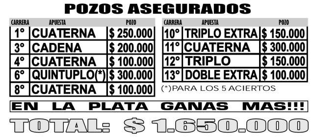 Pozos asegurados Hipódromo de La Plata