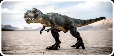 هل الديناصورات حقيقة أم خيال ؟ تعرف على حقيقة الديناصورات وتاريخهم !