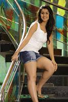 Nikki Galrani Photo Stills from Patas Remake TollywoodBlog