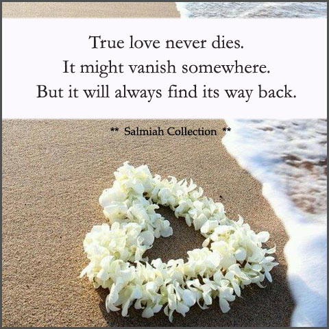 Love Quote 3 True Love Never Dies Salmiah Collection