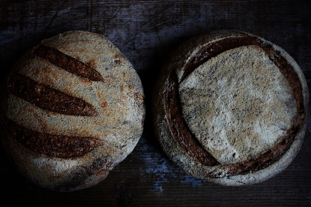Tartine Bread Experiment: Chad's Ode