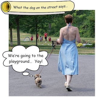 http://dogsarefun.club/2016/07/29/going-to-the-playground-yay/
