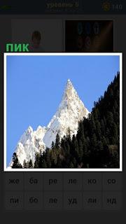 Из -за леса виднеется пик снежной вершины горы