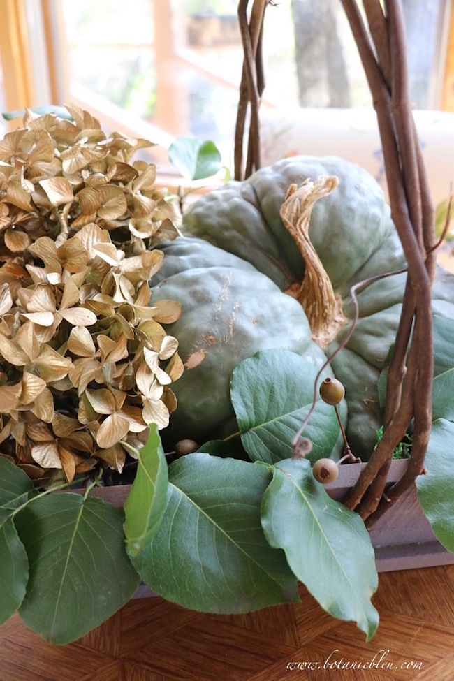 fall-rustic-display-green-pumpkin-gold-painted-hydrangeas-basket