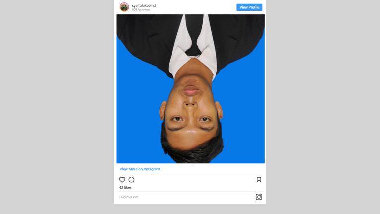 Cara Menambahkan Foto/Video INSTAGRAM Dalam Postingan/Halaman AMP Blogger Pada Template Kompi Minimalis