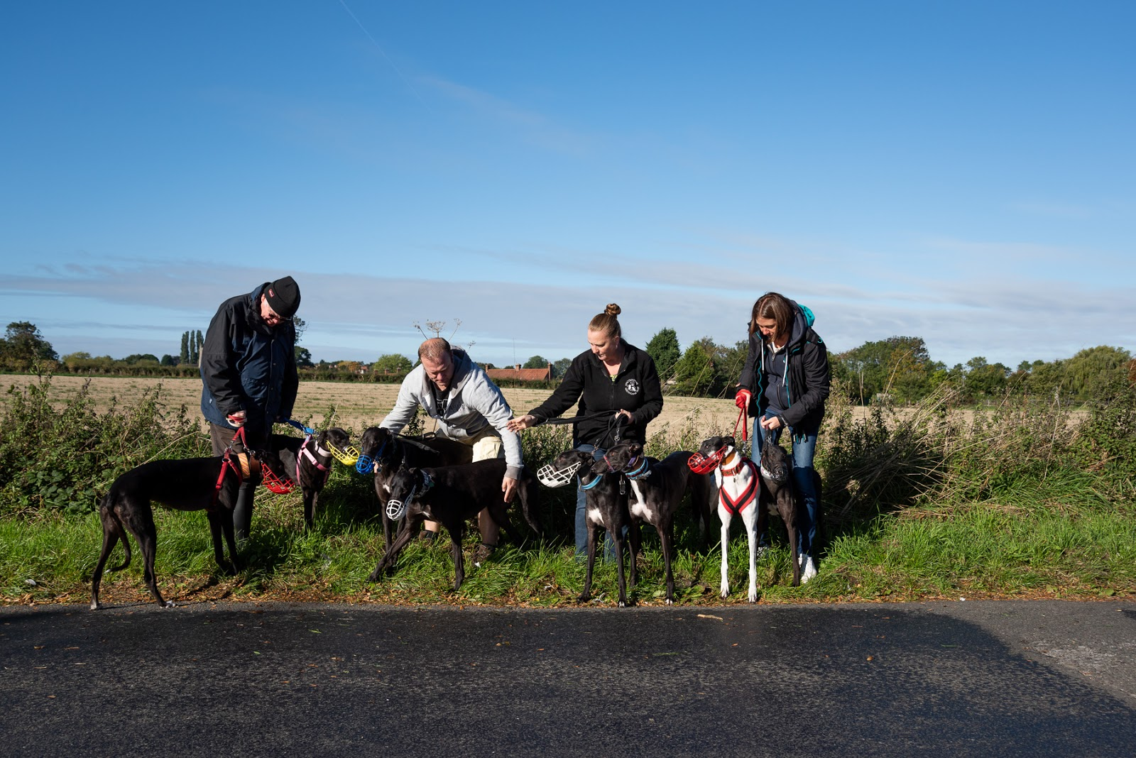 Lincolnshire Greyhound Trust
