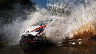 2019 Mexico Rally
