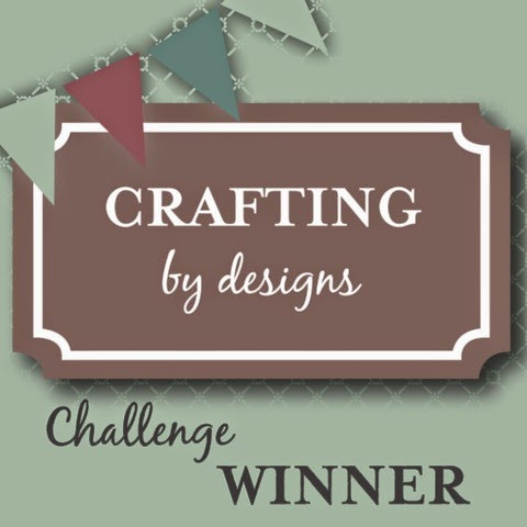 http://craftingbydesigns.blogspot.com/2014/12/winner-december-anything-goes-all.html