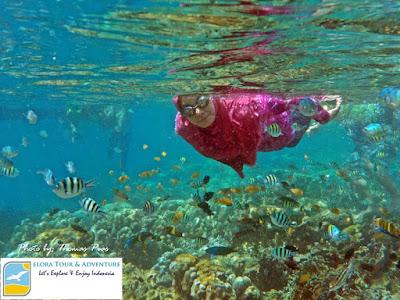 paket tour snorkeling pahawang