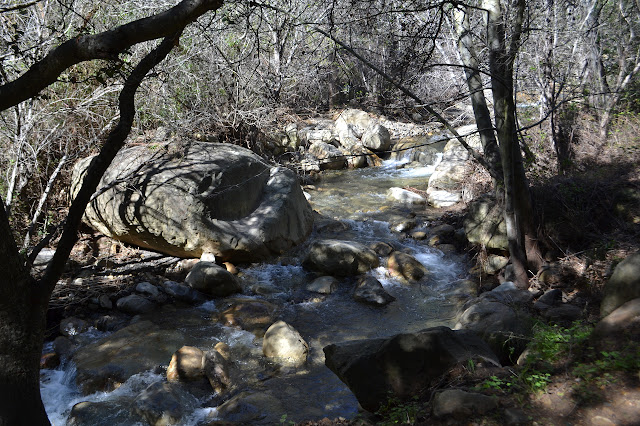 San Ysidro Creek