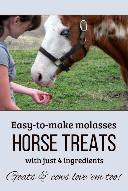 These simple molasses horse treats would be easy to make with children.
