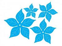 http://www.craftpassion.pl/pl/p/Komplet-wykrojnikow-kwiaty-gwiazda-betlejemska/152