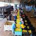 """Por respetar la ética, Compañía Agrícola """"Valle del Sur"""" recibe dos distintivos de la STPS"""