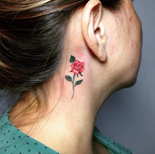 Esta rosa vermelha