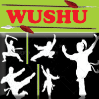 What is WUSHU, wushu training center in ujjain, best sports training center in ujjain city, martial art training center.