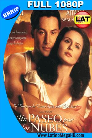 Un Paseo Por Las Nubes (1995) Latino Full HD 1080P ()