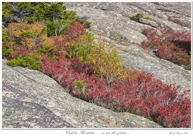 Cadillac Mountain: ... as are the glaciers...