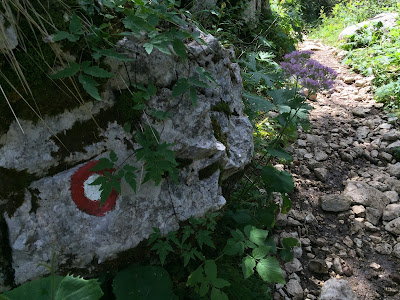 Trail marker during Triglav hike. Red circle with white center.