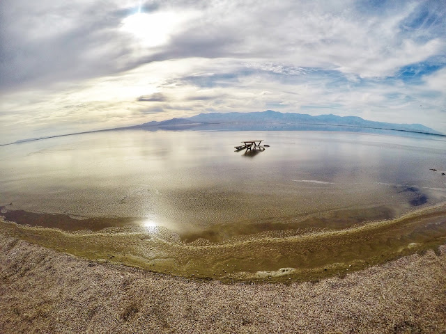 The Salton Sea: A Ghostly Lake in the Desert