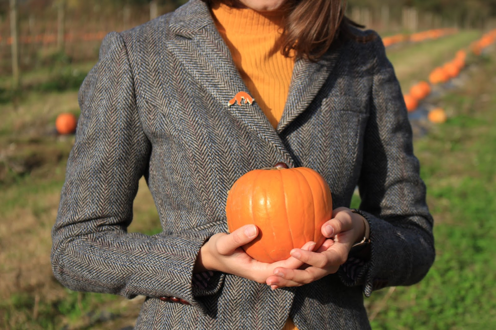 close up of blogger Abbey's tweed blazer, she wears a fox pin badge