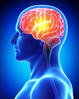 Bukan Cuma Fisik Ini Dia Cara Ampuh Agar Otak Awet Muda