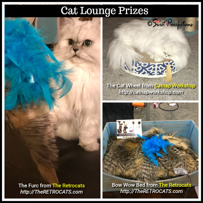Truffle and Brulee and Cat Lounge Prizes